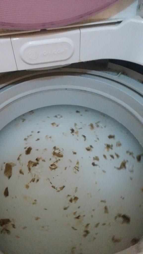 洗濯機掃除8